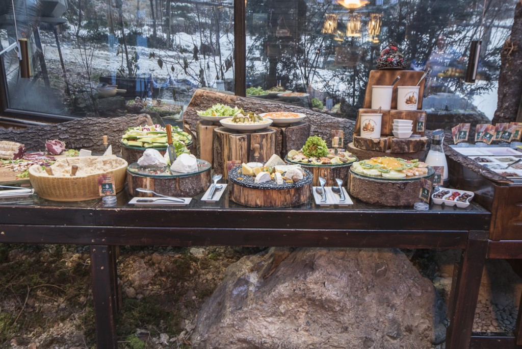 http://touristry.ro/wp-content/uploads/2015/07/01-Forest-Restaurant-1200-0023-1024x684.jpg